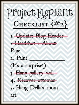 project elephant checklist2